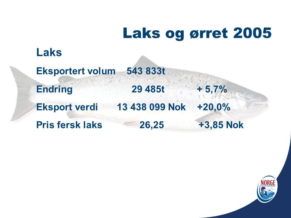 Laks og ørret 2005 Laks Eksportert volum 543 833t Endring 29 485t + 5,7% Eksport verdi 13 438 099 Nok +20,0% Pris fersk laks 26,25 +3,85 Nok