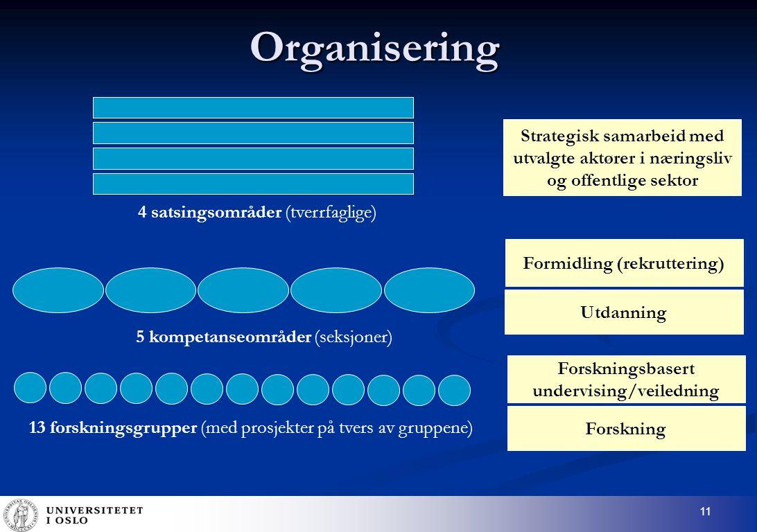 11 Organisering 5 kompetanseområder (seksjoner) Utdanning Formidling (rekruttering) 13 forskningsgrupper (med prosjekter på tvers av gruppene) Forskning Forskningsbasert undervising/veiledning 4 satsingsområder (tverrfaglige) Strategisk samarbeid med utvalgte aktører i næringsliv og offentlige sektor