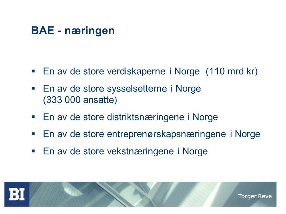 Torger Reve Senter for økonomiske analyser og kompetanseformidling i byggenæringens økonomi ved Handelshøyskolen BI  Terje S.
