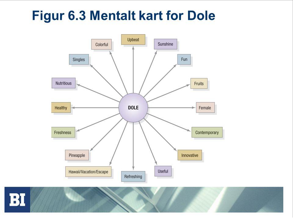 Figur 6.3 Mentalt kart for Dole