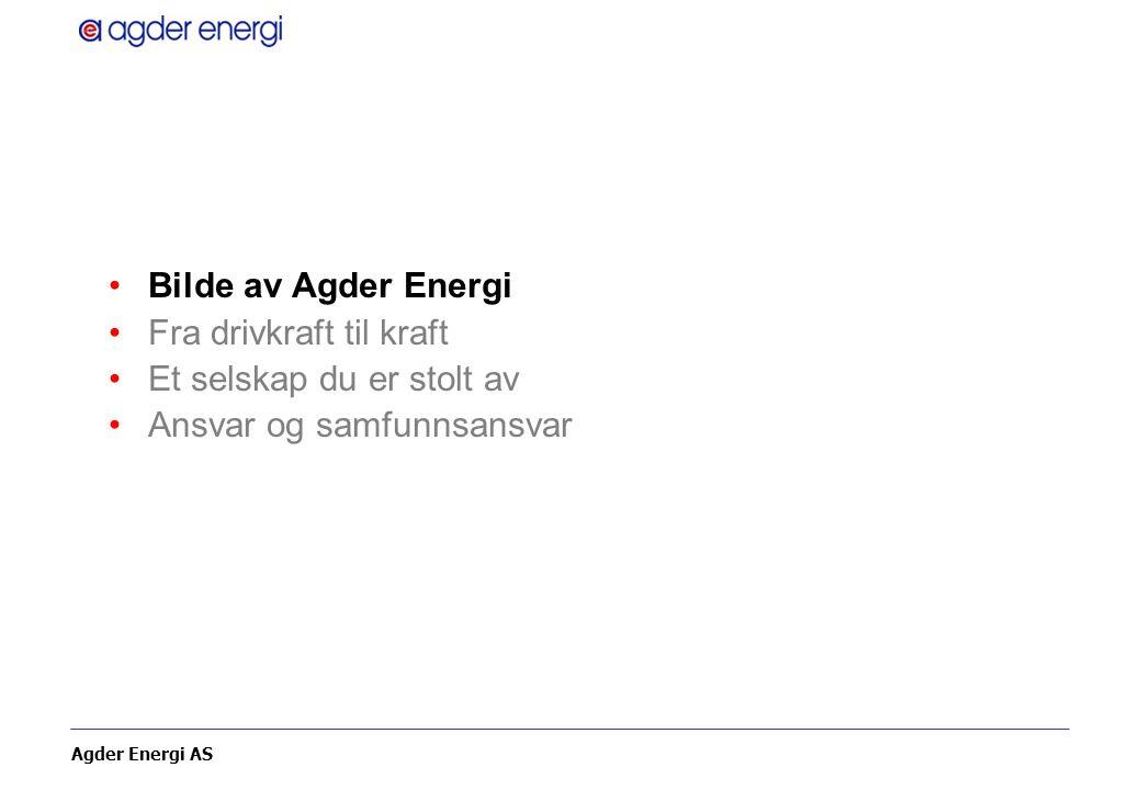 Agder Energi AS Agder Energi Eiere –30 kommuner på Agder 54,5 % –Statkraft 45,5 % Etablert 2000 ved fusjon av –Aust-Agder Energi –Kristiansand Energiverk –Vest-Agder Energiverk Omsetning –4,5 mrd kr (2006) Antall ansatte –1.100 Total sysselsettingseffekt – 4.000 på landsbasis