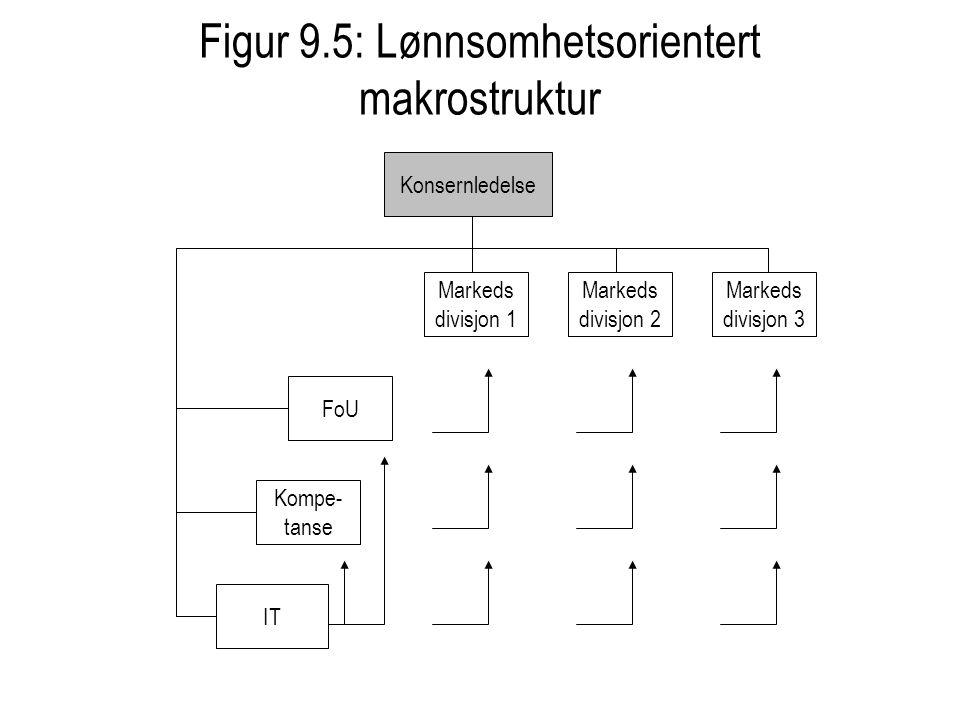 Figur 9.5: Lønnsomhetsorientert makrostruktur IT FoU Kompe- tanse Markeds divisjon 1 Markeds divisjon 2 Markeds divisjon 3 Konsernledelse