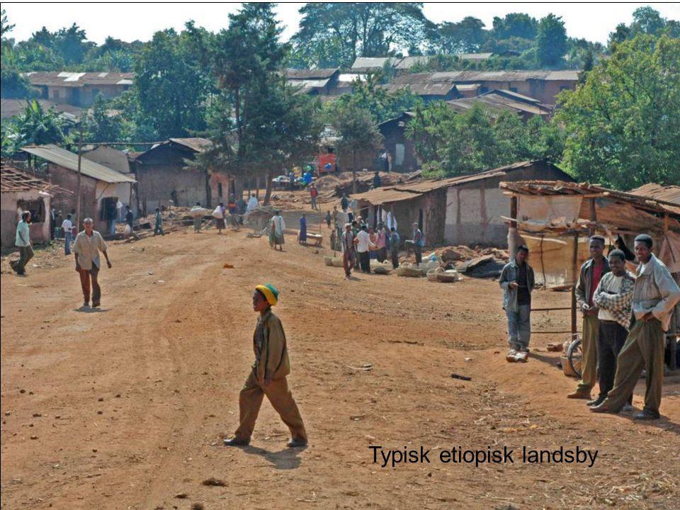 Typisk etiopisk landsby