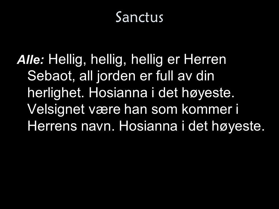 Sanctus Alle: Hellig, hellig, hellig er Herren Sebaot, all jorden er full av din herlighet. Hosianna i det høyeste. Velsignet være han som kommer i He