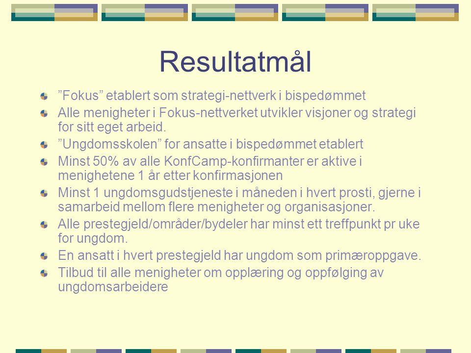 Resultatmål Fokus etablert som strategi-nettverk i bispedømmet Alle menigheter i Fokus-nettverket utvikler visjoner og strategi for sitt eget arbeid.