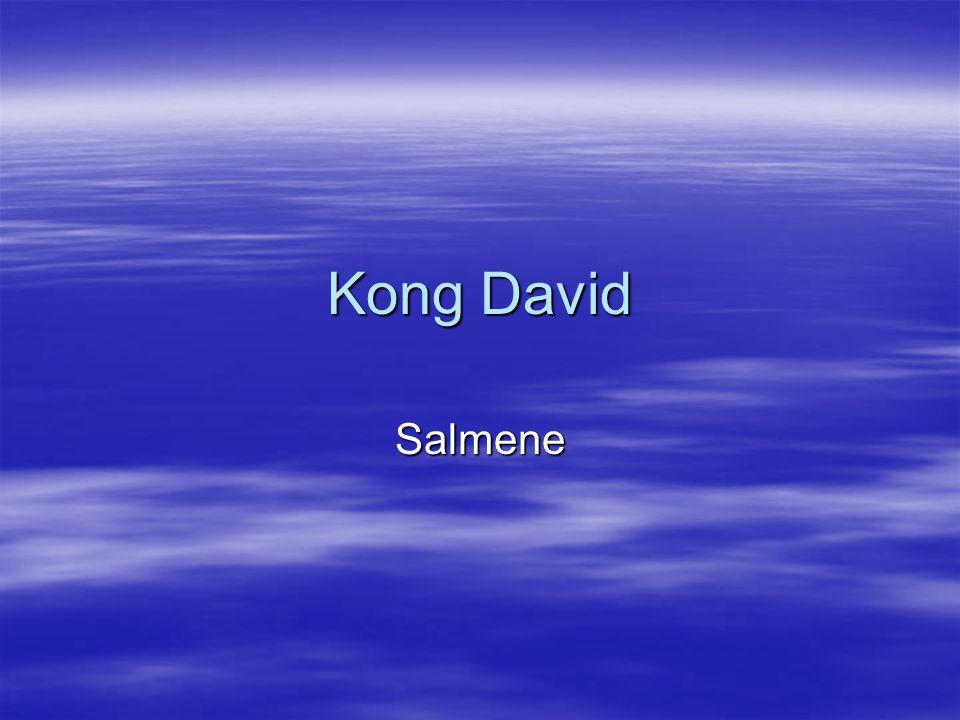  Under kong David fikk sang - og musikklivet i Israel sitt store gjennombrudd.