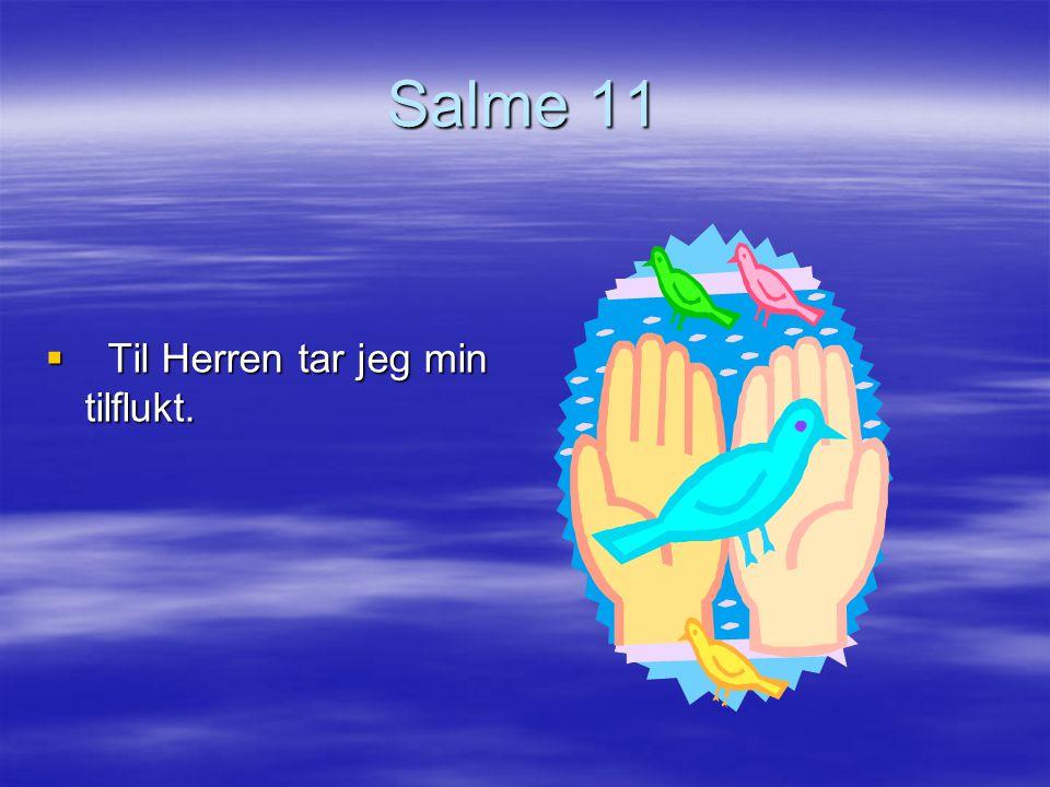 Salme 22 Min Gud, min Gud 22 Min Gud, min Gud, hvorfor har du forlatt meg.