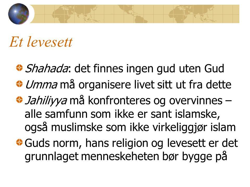 Et levesett Shahada: det finnes ingen gud uten Gud Umma må organisere livet sitt ut fra dette Jahiliyya må konfronteres og overvinnes – alle samfunn som ikke er sant islamske, også muslimske som ikke virkeliggjør islam Guds norm, hans religion og levesett er det grunnlaget menneskeheten bør bygge på