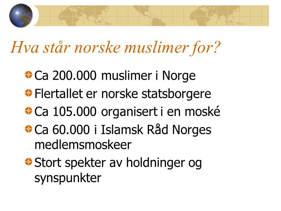 Hva står norske muslimer for? Ca 200.000 muslimer i Norge Flertallet er norske statsborgere Ca 105.000 organisert i en moské Ca 60.000 i Islamsk Råd N