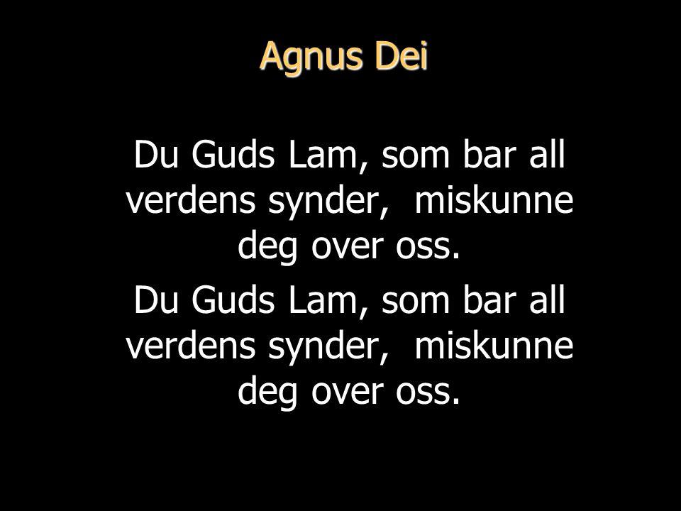 Agnus Dei Du Guds Lam, som bar all verdens synder, miskunne deg over oss.
