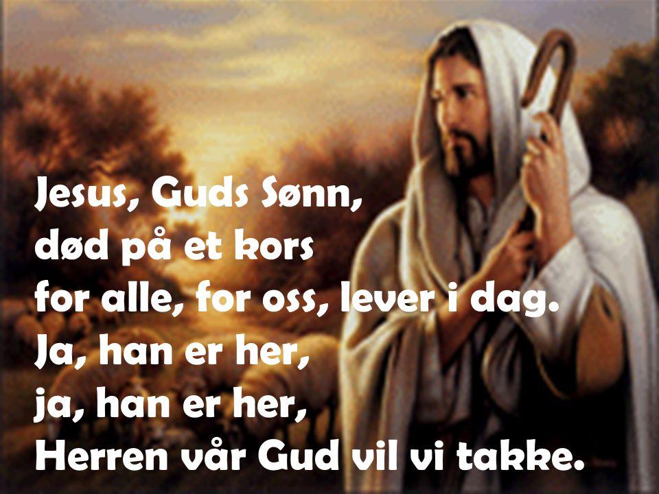 Jesus, Guds Sønn, død på et kors for alle, for oss, lever i dag.