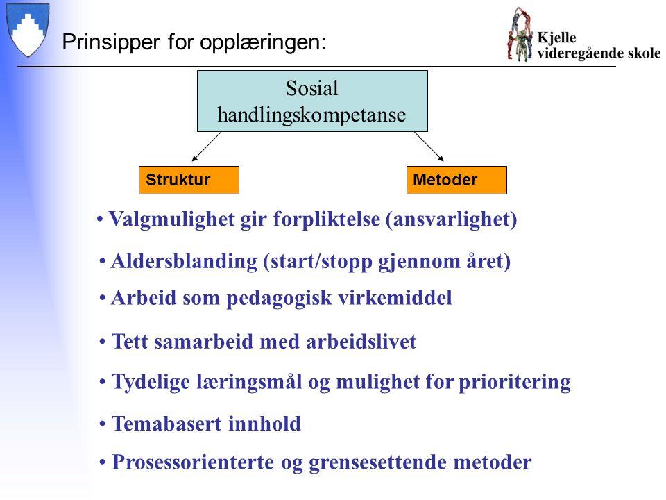 Prinsipper for opplæringen: StrukturMetoder Valgmulighet gir forpliktelse (ansvarlighet) Sosial handlingskompetanse Aldersblanding (start/stopp gjenno