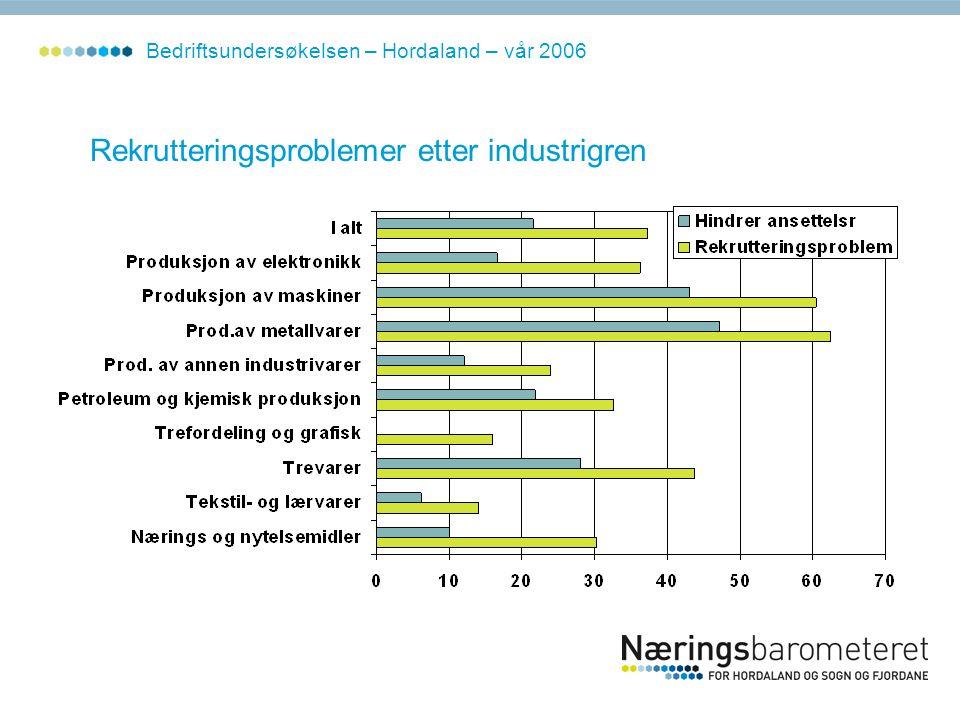 Rekrutteringsproblemer etter industrigren Bedriftsundersøkelsen – Hordaland – vår 2006