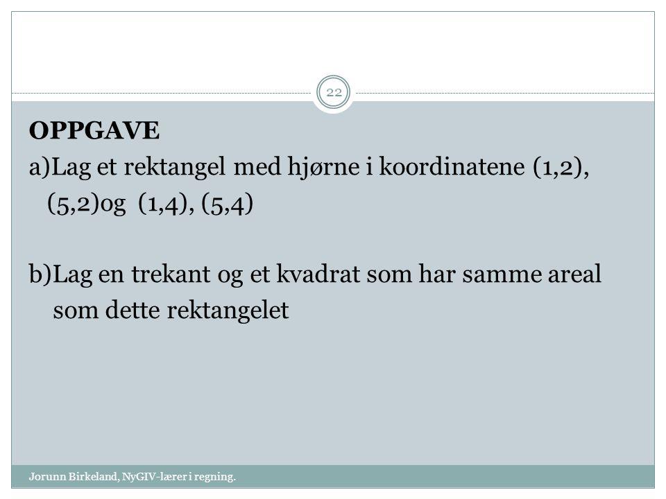 Jorunn Birkeland, NyGIV-lærer i regning.
