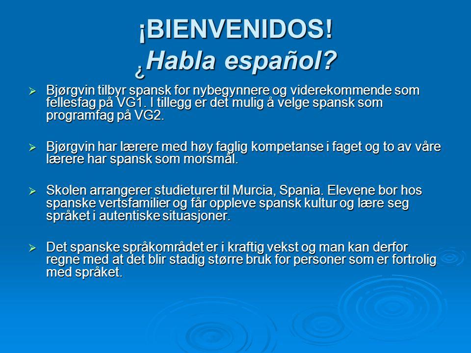 ¡BIENVENIDOS! ¿ Habla español?  Bjørgvin tilbyr spansk for nybegynnere og viderekommende som fellesfag på VG1. I tillegg er det mulig å velge spansk