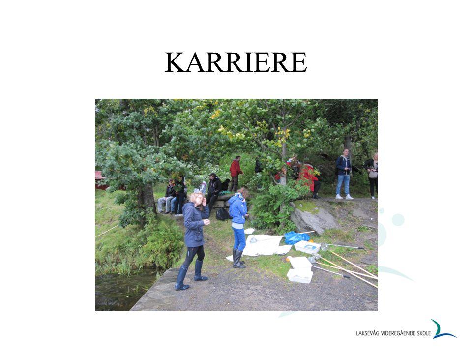 KARRIERE