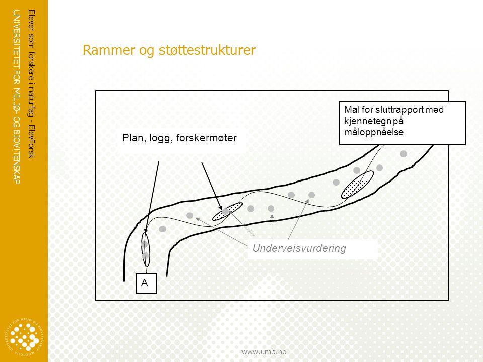 UNIVERSITETET FOR MILJØ- OG BIOVITENSKAP www.umb.no Rammer og støttestrukturer Elever som forskere i naturfag - ElevForsk A Mal for sluttrapport med k