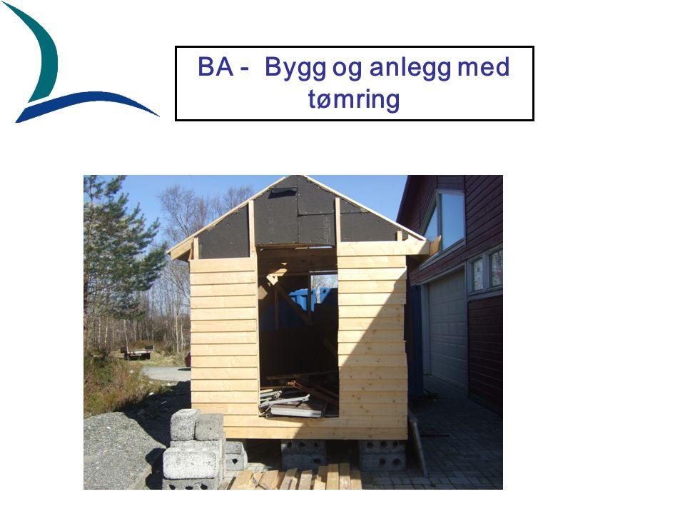 BA - Bygg og anlegg med tømring