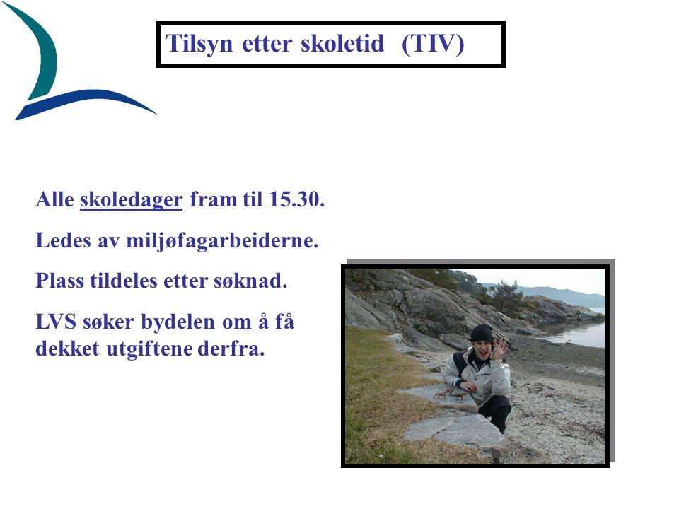 Tilsyn etter skoletid (TIV) Alle skoledager fram til 15.30. Ledes av miljøfagarbeiderne. Plass tildeles etter søknad. LVS søker bydelen om å få dekket