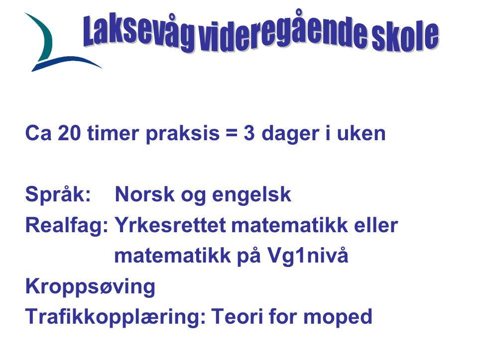Ca 20 timer praksis = 3 dager i uken Språk: Norsk og engelsk Realfag: Yrkesrettet matematikk eller matematikk på Vg1nivå Kroppsøving Trafikkopplæring: Teori for moped