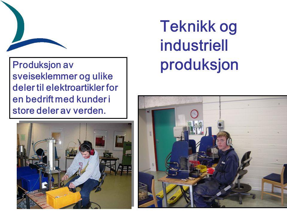 Produksjon av sveiseklemmer og ulike deler til elektroartikler for en bedrift med kunder i store deler av verden. Teknikk og industriell produksjon