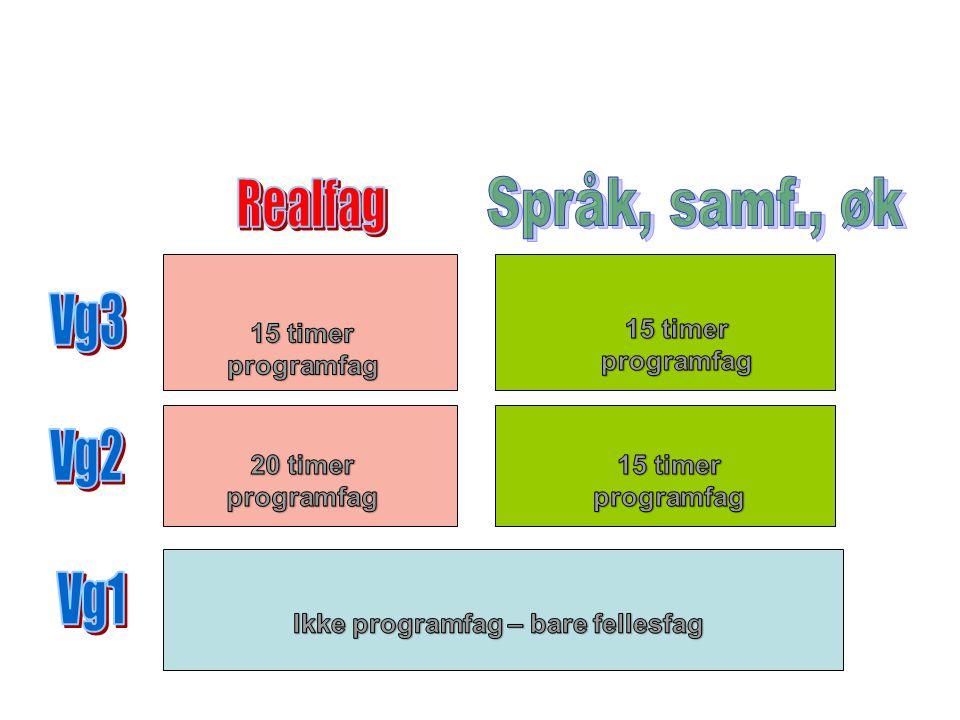 Valg av fag Avgjør først om du skal ha matematikk som programfag (S1 eller R1) Utenom matematikken skal du ha tre programfag 2 av programfagene må du ha over to år Uten S1 eller R1:Vi råder deg til å velge alle tre fra samme programområde på Vg2.