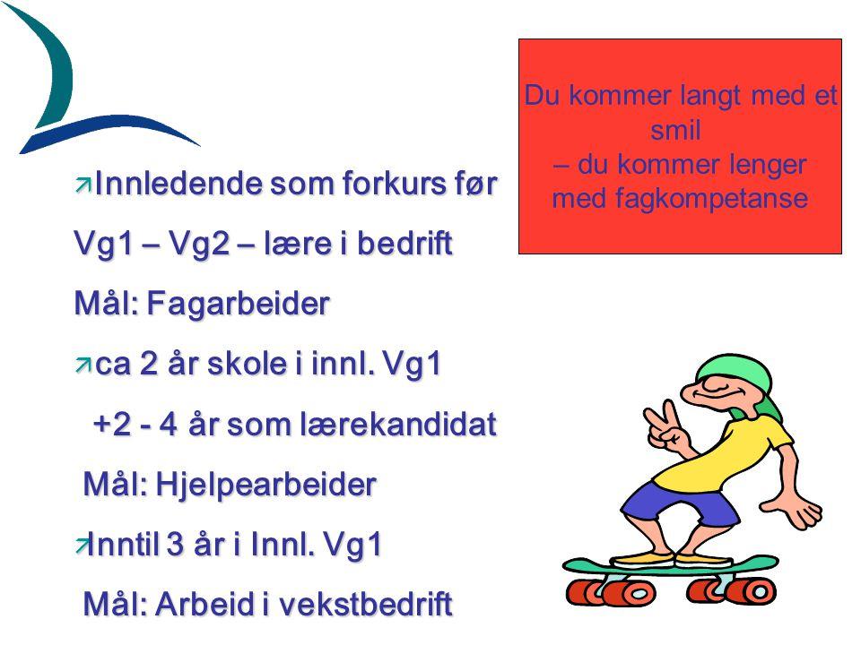 ä Innledende som forkurs før Vg1 – Vg2 – lære i bedrift Mål: Fagarbeider ä ca 2 år skole i innl.