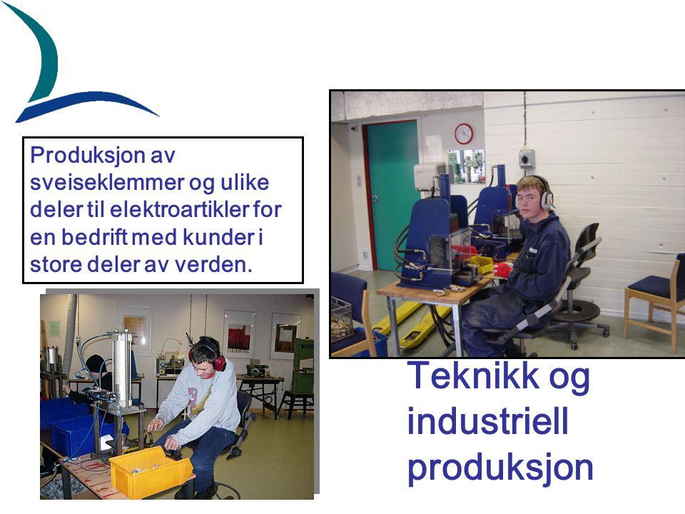 Produksjon av sveiseklemmer og ulike deler til elektroartikler for en bedrift med kunder i store deler av verden.