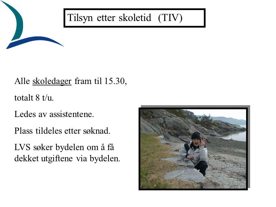 Tilsyn etter skoletid (TIV) Alle skoledager fram til 15.30, totalt 8 t/u.