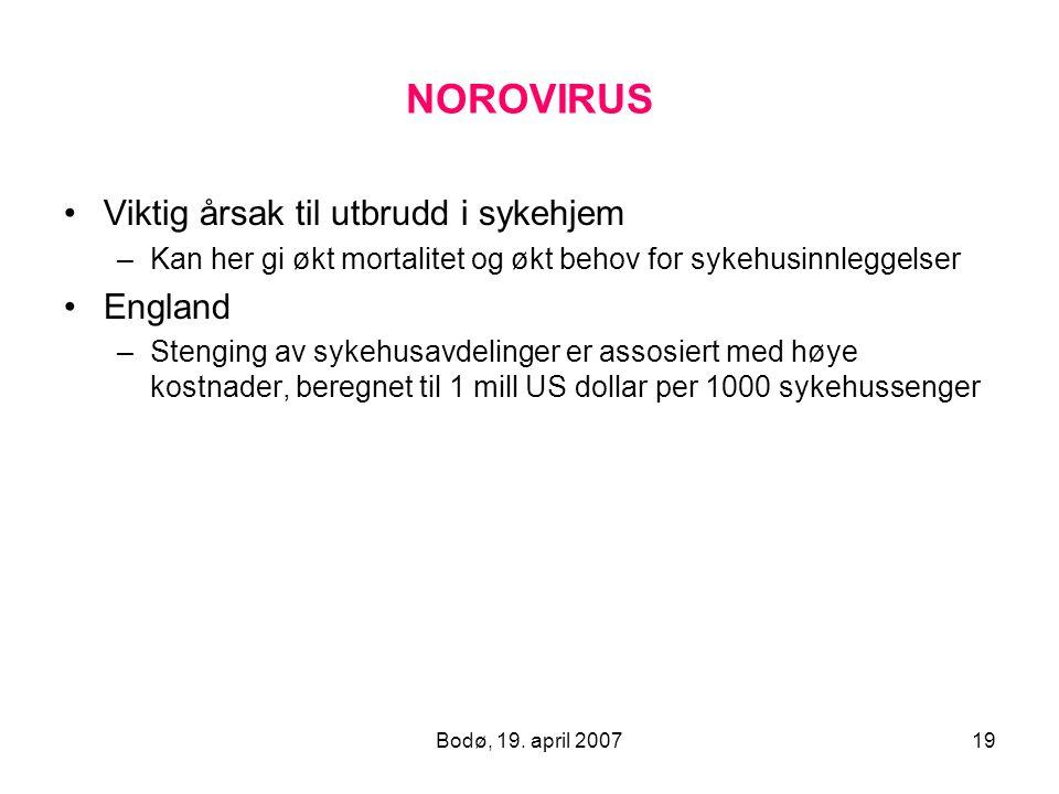 Bodø, 19. april 200719 NOROVIRUS Viktig årsak til utbrudd i sykehjem –Kan her gi økt mortalitet og økt behov for sykehusinnleggelser England –Stenging