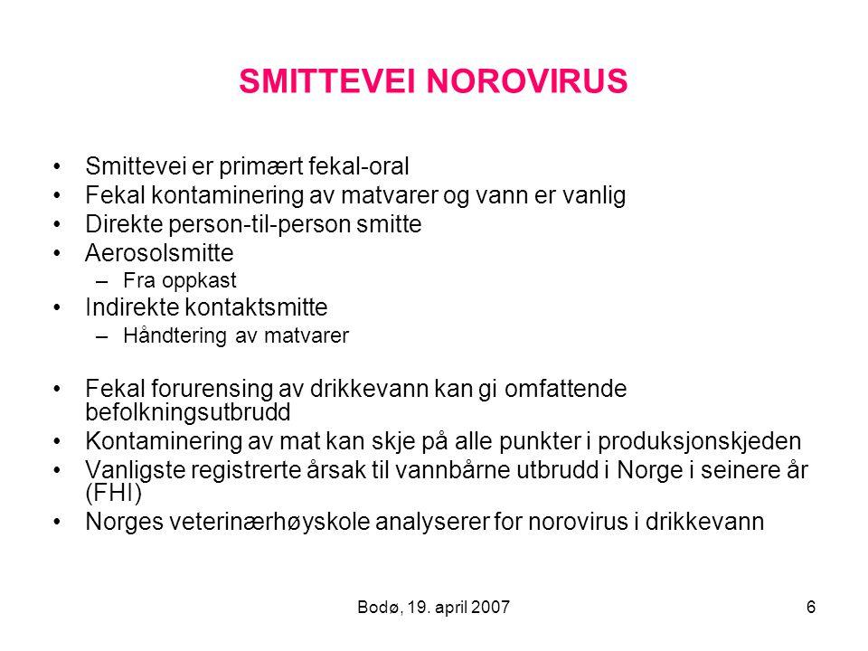 Bodø, 19. april 20076 SMITTEVEI NOROVIRUS Smittevei er primært fekal-oral Fekal kontaminering av matvarer og vann er vanlig Direkte person-til-person
