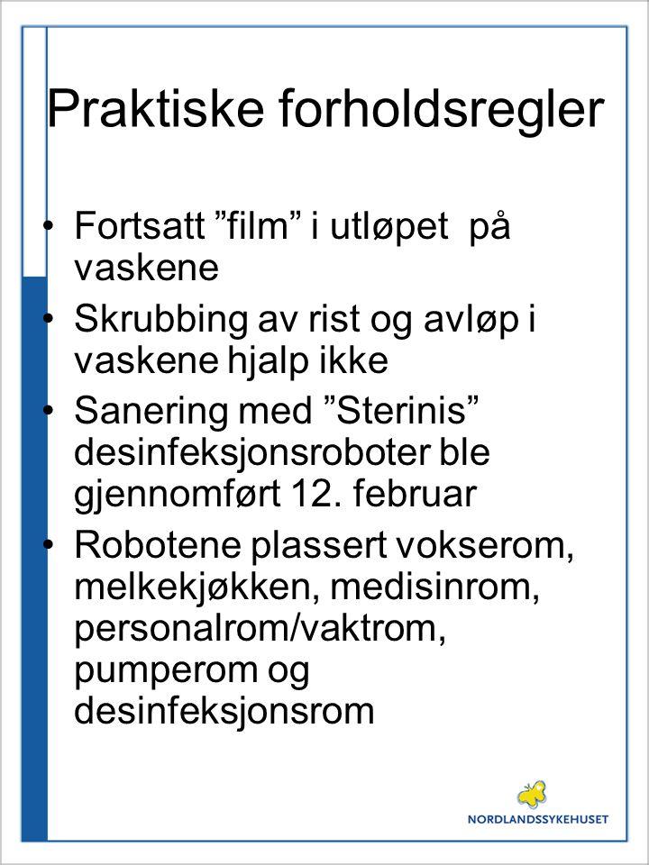 """Praktiske forholdsregler Fortsatt """"film"""" i utløpet på vaskene Skrubbing av rist og avløp i vaskene hjalp ikke Sanering med """"Sterinis"""" desinfeksjonsrob"""