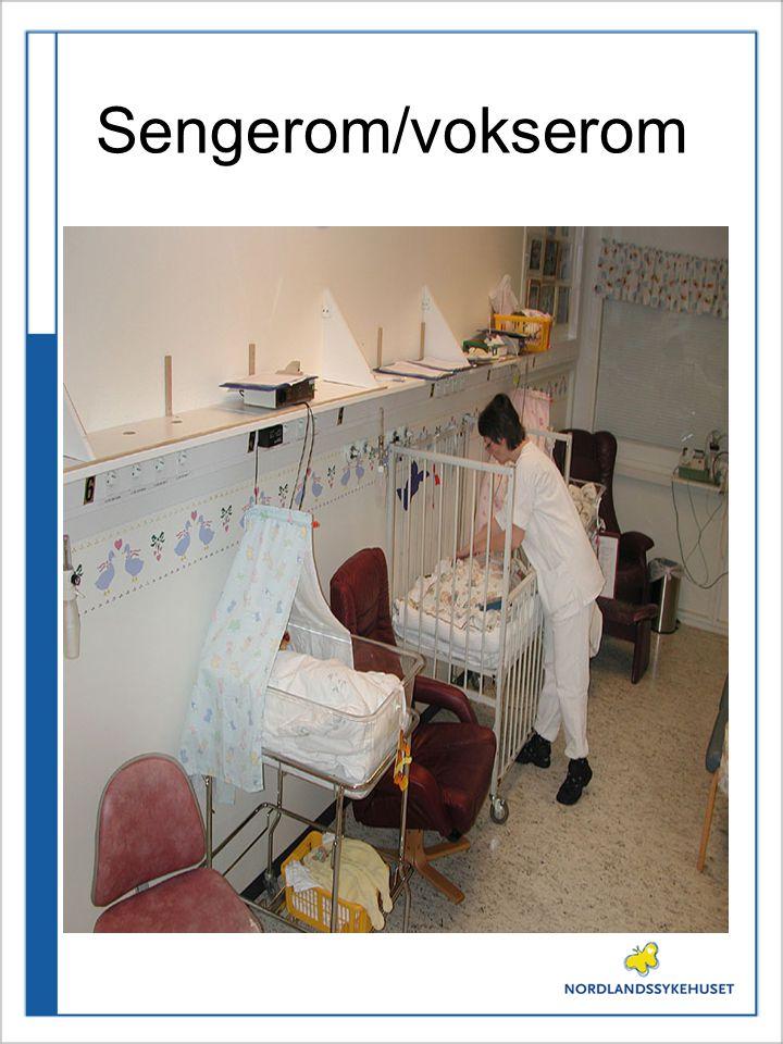 Sengerom/vokserom