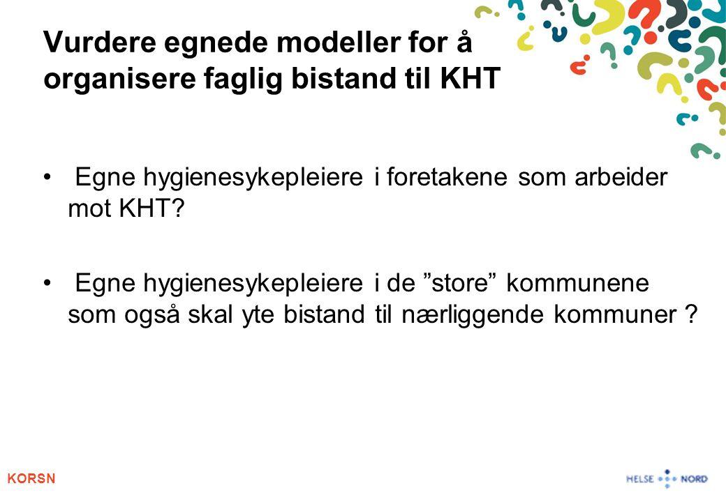KORSN Vurdere egnede modeller for å organisere faglig bistand til KHT Egne hygienesykepleiere i foretakene som arbeider mot KHT? Egne hygienesykepleie