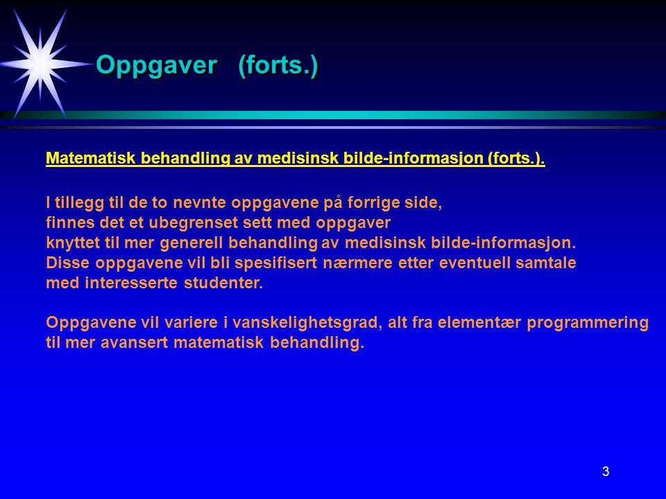 3 Oppgaver (forts.) Matematisk behandling av medisinsk bilde-informasjon (forts.).
