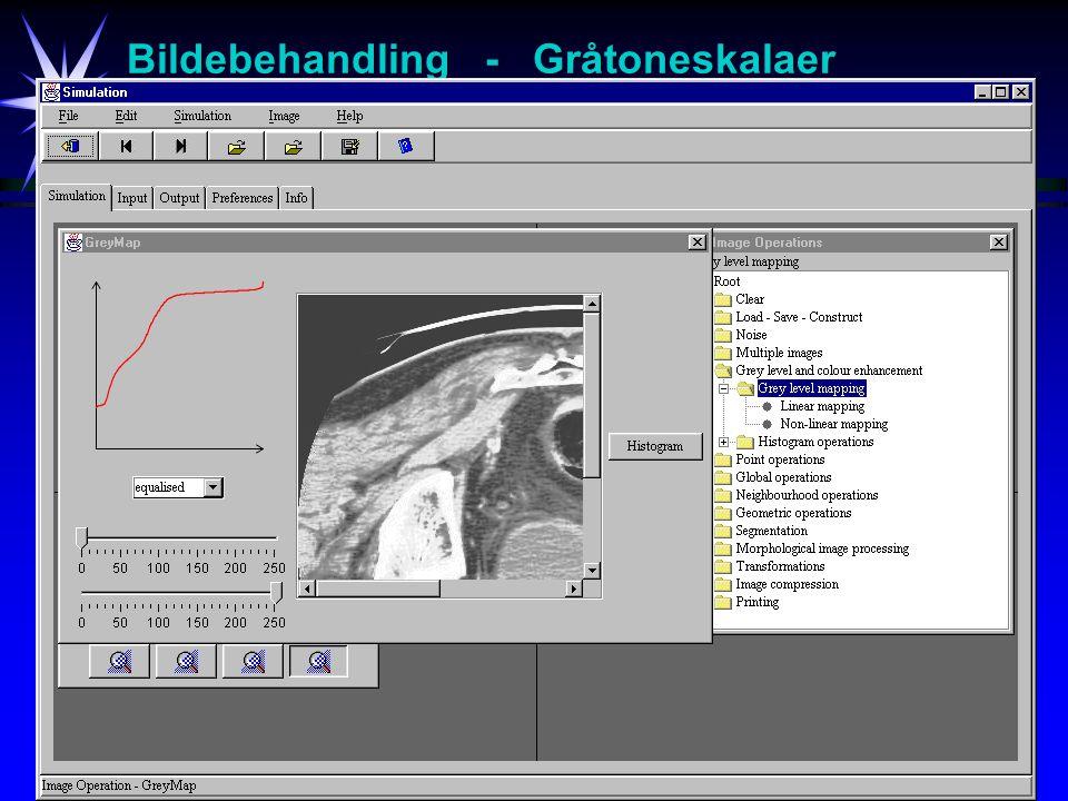 11 Bildebehandling - Gråtoneskalaer