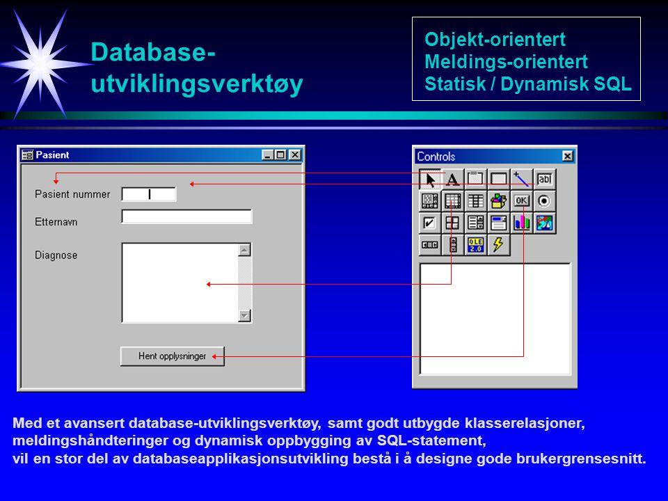 Database- utviklingsverktøy Med et avansert database-utviklingsverktøy, samt godt utbygde klasserelasjoner, meldingshåndteringer og dynamisk oppbygging av SQL-statement, vil en stor del av databaseapplikasjonsutvikling bestå i å designe gode brukergrensesnitt.