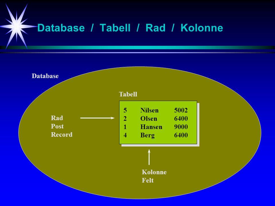 Database / Tabell / Rad / Kolonne 5Nilsen5002 2Olsen6400 1Hansen9000 4Berg6400 Database Tabell Rad Post Record Kolonne Felt