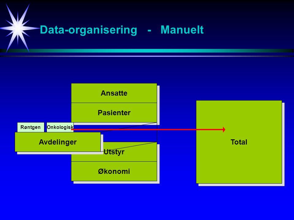 Hva er en relasjons-database .