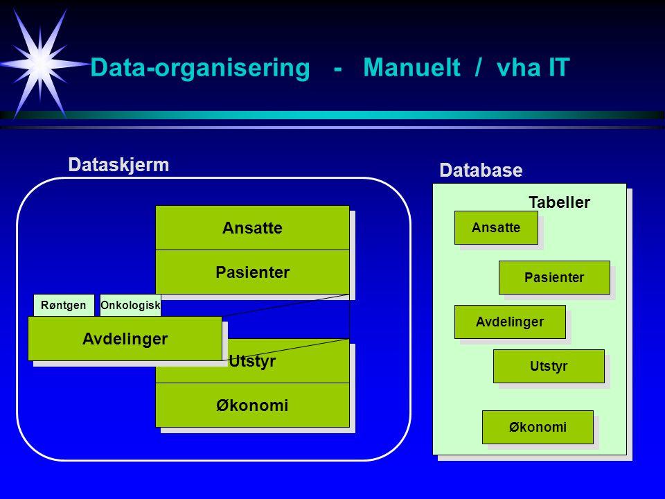 Data-organisering - Manuelt / vha IT Ansatte Pasienter Utstyr Økonomi Avdelinger RøntgenOnkologisk Dataskjerm Database Ansatte Pasienter Avdelinger Utstyr Økonomi Tabeller