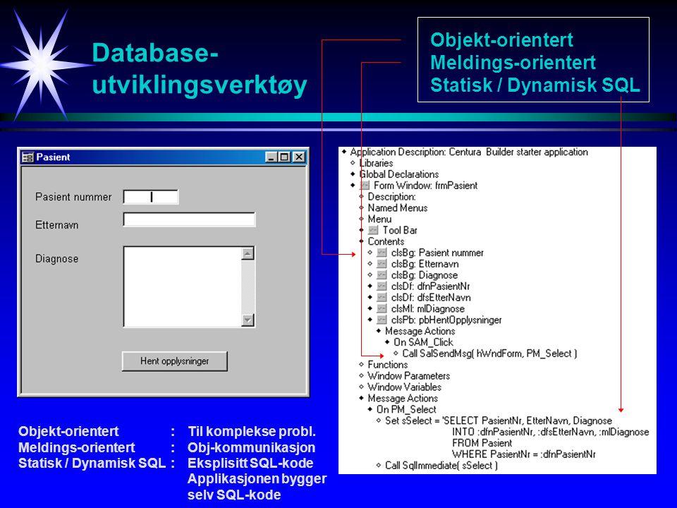 Database- utviklingsverktøy Objekt-orientert Meldings-orientert Statisk / Dynamisk SQL Objekt-orientert:Til komplekse probl.