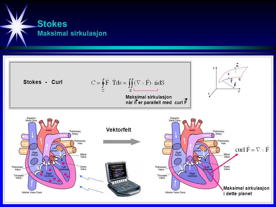 Stokes Maksimal sirkulasjon Stokes - Curl Vektorfelt Maksimal sirkulasjon i dette planet Maksimal sirkulasjon når n er parallell med curl F