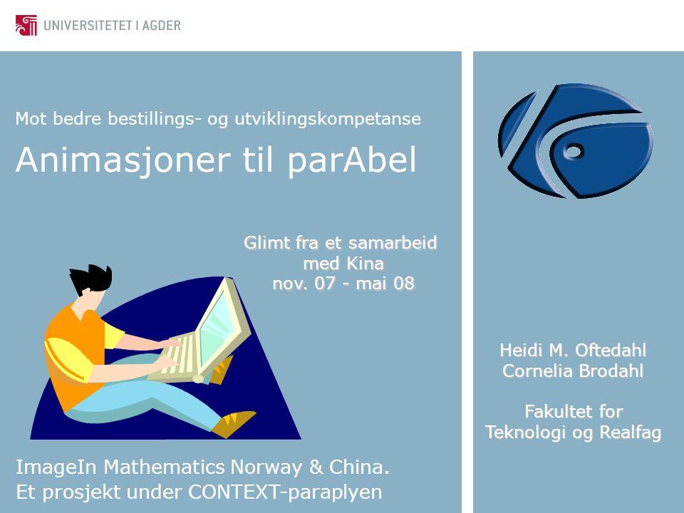 Mot bedre bestillings- og utviklingskompetanse Animasjoner til parAbel ImageIn Mathematics Norway & China. Et prosjekt under CONTEXT-paraplyen Heidi M