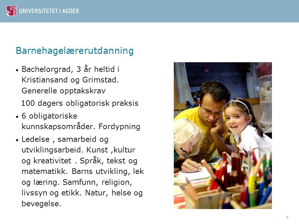 7 Barnehagelærerutdanning Bachelorgrad, 3 år heltid i Kristiansand og Grimstad.