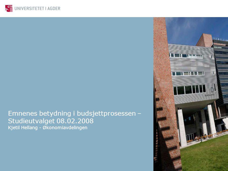 Emnenes betydning i budsjettprosessen – Studieutvalget 08.02.2008 Kjetil Hellang - Økonomiavdelingen