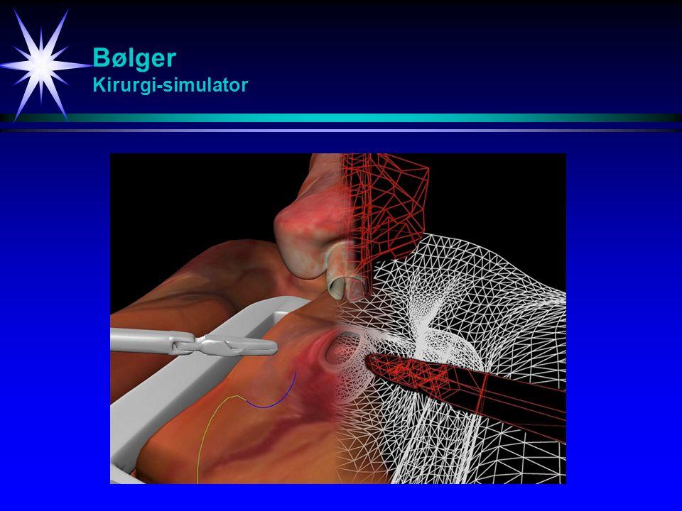 Bølger Kirurgi-simulator