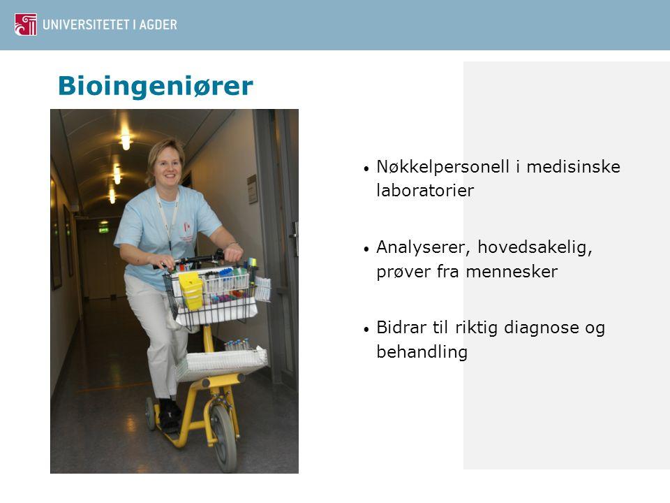 Bioingeniører Nøkkelpersonell i medisinske laboratorier Analyserer, hovedsakelig, prøver fra mennesker Bidrar til riktig diagnose og behandling