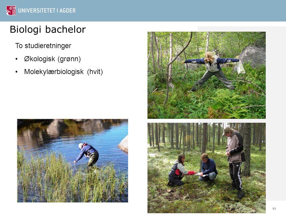 11 Biologi bachelor To studieretninger Økologisk (grønn) Molekylærbiologisk (hvit)