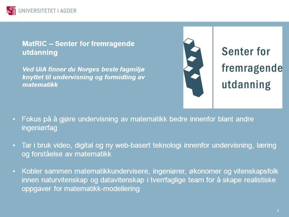 3 MatRIC – Senter for fremragende utdanning Ved UiA finner du Norges beste fagmiljø knyttet til undervisning og formidling av matematikk Fokus på å gj