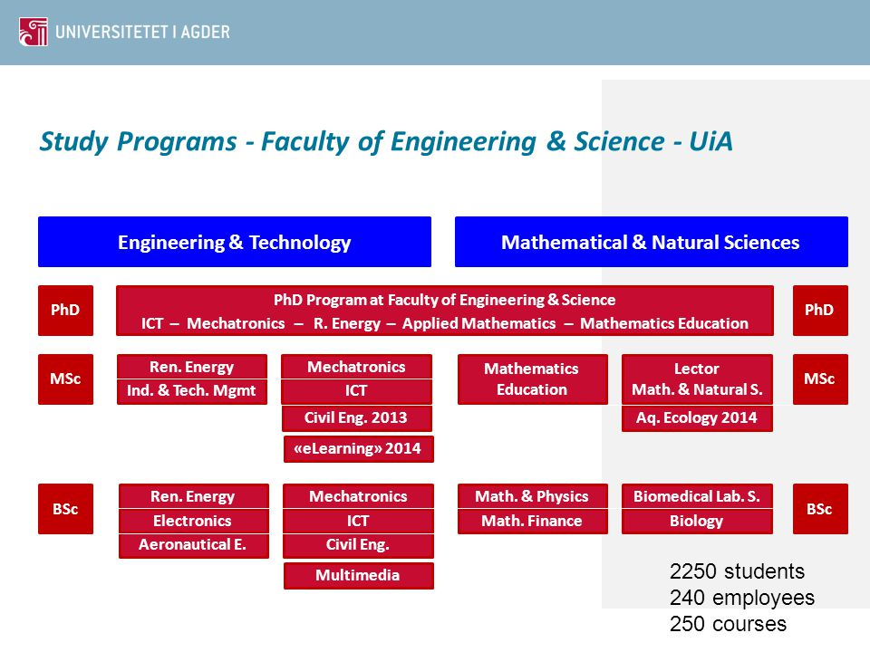 Biomedical Lab. S. Biology Math. & Physics Math. Finance Study Programs - Faculty of Engineering & Science - UiA Engineering & TechnologyMathematical